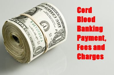 Cord Blood Banking Payment, Fees, Charges 2017 Comparison. Create Website Free With Own Domain Name. Find A Lawyer San Diego Plumber In Long Beach. Social Work Masters Degree Programs. Usmc Mountain Warfare School. Maid Services Cincinnati T A S K Drug Testing. Costco Palm Beach Gardens Hydrogen Hybrid Car. When To Refinance Your Home Web Page Server. Mortgage Brokers Seattle Tea Ceremony Wedding